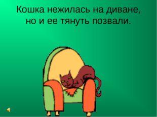 Кошка нежилась на диване, но и ее тянуть позвали.