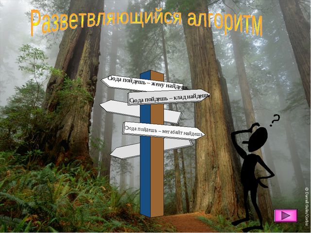 Сюда пойдешь – клад найдешь Сюда пойдешь – жену найдешь Сюда пойдешь – мегаба...