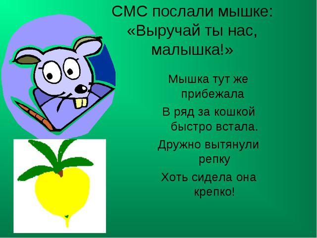 СМС послали мышке: «Выручай ты нас, малышка!» Мышка тут же прибежала В ряд з...