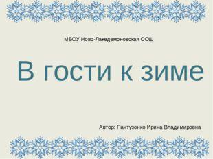В гости к зиме Автор: Пантузенко Ирина Владимировна МБОУ Ново-Лакедемоновская