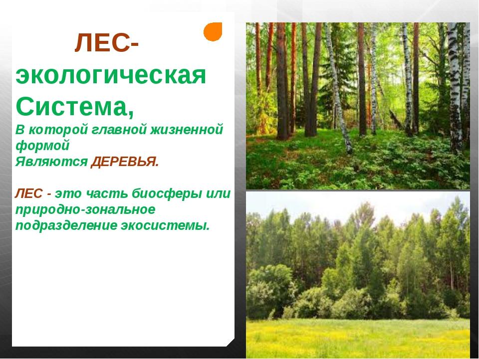 ЛЕС- экологическая Система, В которой главной жизненной формой Являются ДЕРЕ...