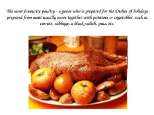 The most favourite poultry - a goose who is prepared for the Dishes of holida