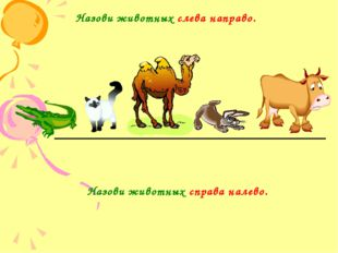 Назови животных слева направо. Назови животных справа налево.