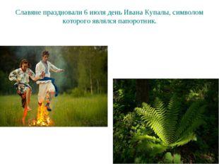 Славяне праздновали 6 июля день Ивана Купалы, символом которого являлся папор