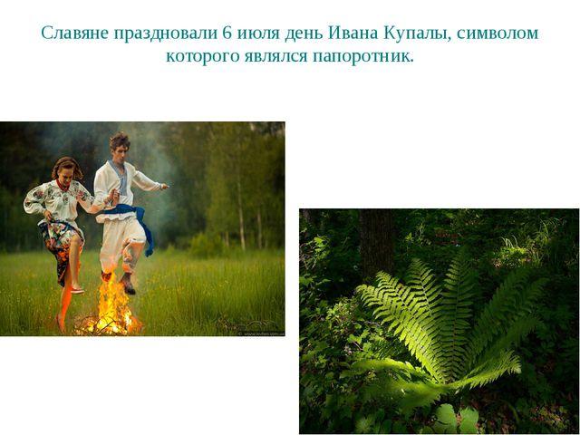 Славяне праздновали 6 июля день Ивана Купалы, символом которого являлся папор...