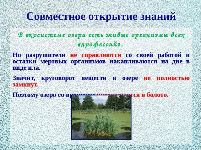 Совместное открытие знаний В экосистеме озера есть живые организмы всех «проф...