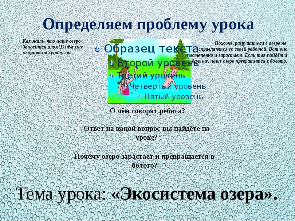 Определяем проблему урока Похоже, разрушители в озере не справляются со своей...