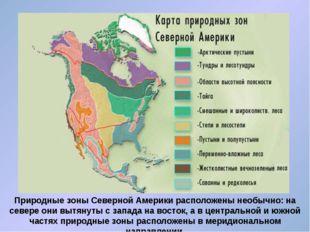 Природные зоны Северной Америки расположены необычно: на севере они вытянуты