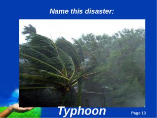 Typhoon Name this disaster: Page