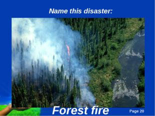 Forest fire Name this disaster: Page