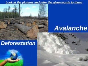 Look at the pictures and refer the given words to them: Deforestation Avalanc