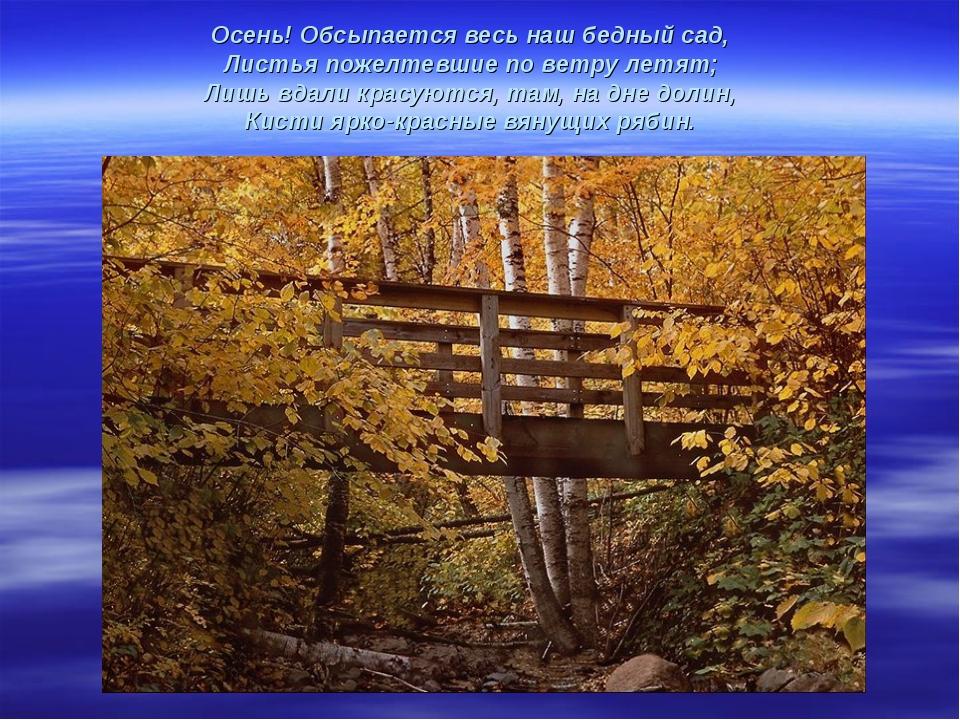 Осень! Обсыпается весь наш бедный сад, Листья пожелтевшие по ветру летят; Лиш...