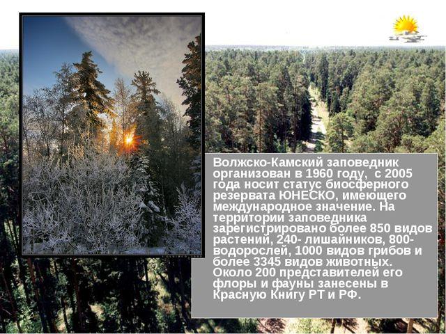 Волжско-Камский заповедник организован в 1960 году, с 2005 года носит статус...