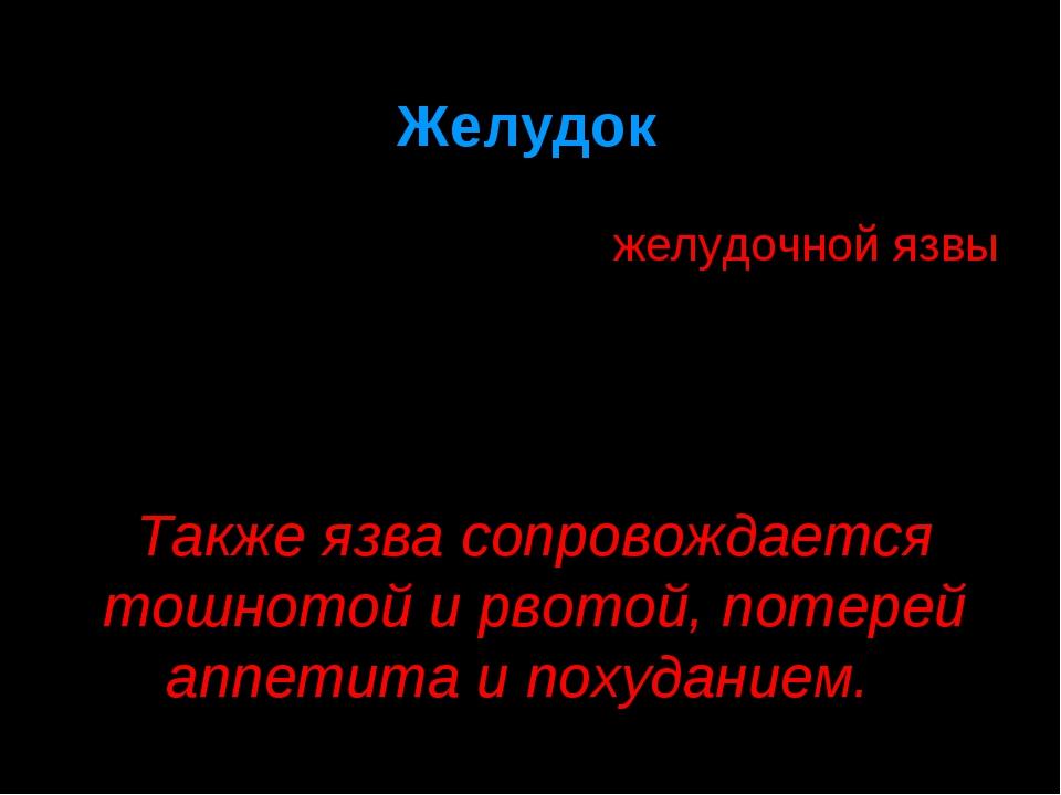 Желудок Одним из эффектов длительного курения является возникновение желудочн...