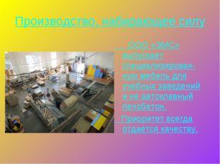 Производство, набирающее силу ООО «ЭМС» выпускает специализирован-ную мебель