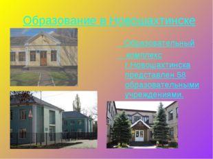 Образование в Новошахтинске Образовательный комплекс г.Новошахтинска представ