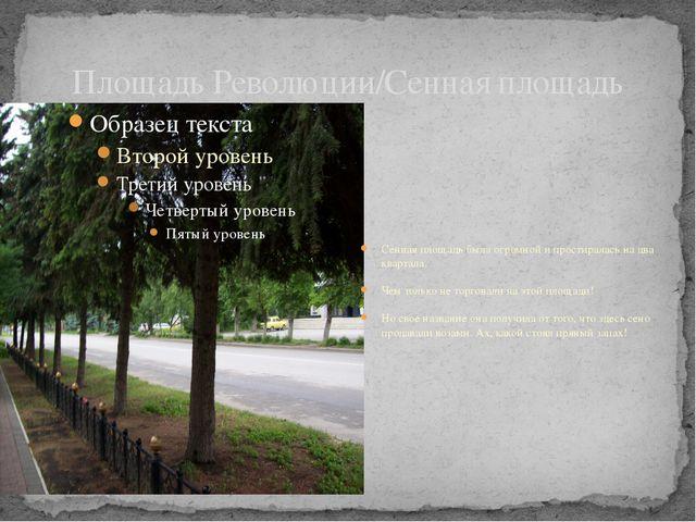 Площадь Революции/Сенная площадь Сенная площадь была огромной и простиралась...