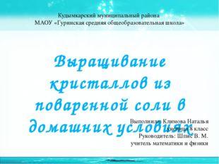Кудымкарский муниципальный района МАОУ «Гуринская средняя общеобразовательная