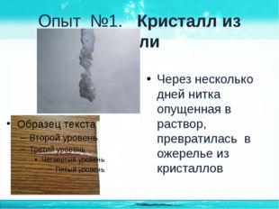 Опыт №1. Кристалл из соли Через несколько дней нитка опущенная в раствор, пре