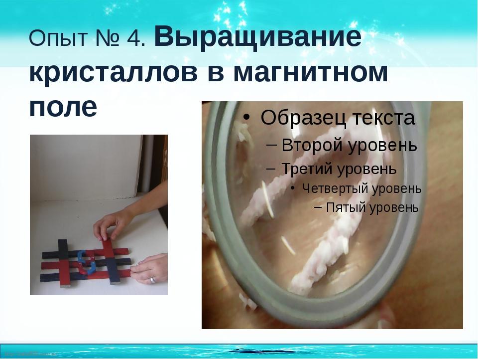 Опыт № 4. Выращивание кристаллов в магнитном поле http://linda6035.ucoz.ru/