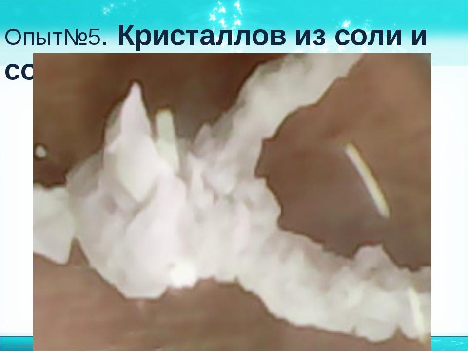 Опыт№5. Кристаллов из соли и соды http://linda6035.ucoz.ru/