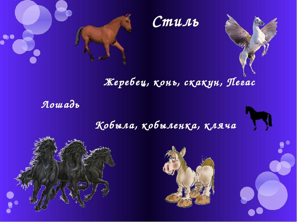 Стиль Лошадь Кобыла, кобыленка, кляча Жеребец, конь, скакун, Пегас