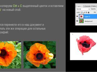 Затем копируем Ctrl + C выделенный цветок и вставляем Ctrl + V на новый слой
