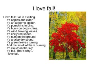 I love fall! I love fall! Fall is exciting. It's apples and cider. It's an ai