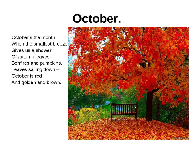 October. October's the month When the smallest breeze Gives us a shower Of au...