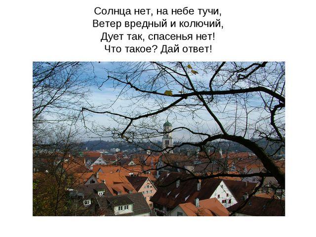 Солнца нет, на небе тучи, Ветер вредный и колючий, Дует так, спасенья нет! Ч...