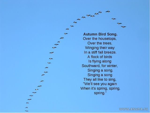 Autumn Bird Song. Over the housetops, Over the trees, Winging their way In a...