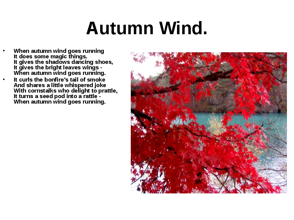 Autumn Wind. When autumn wind goes running It does some magic things. It give...