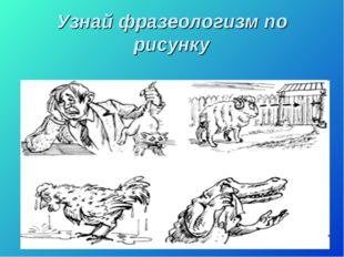 Узнай фразеологизм по рисунку