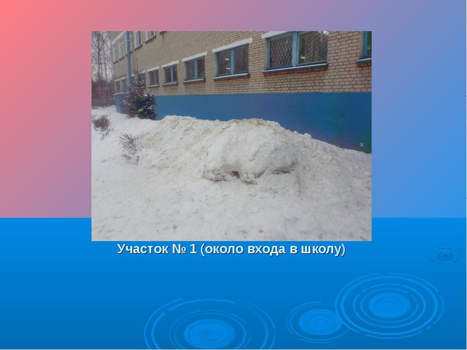 Участок № 1 (около входа в школу)
