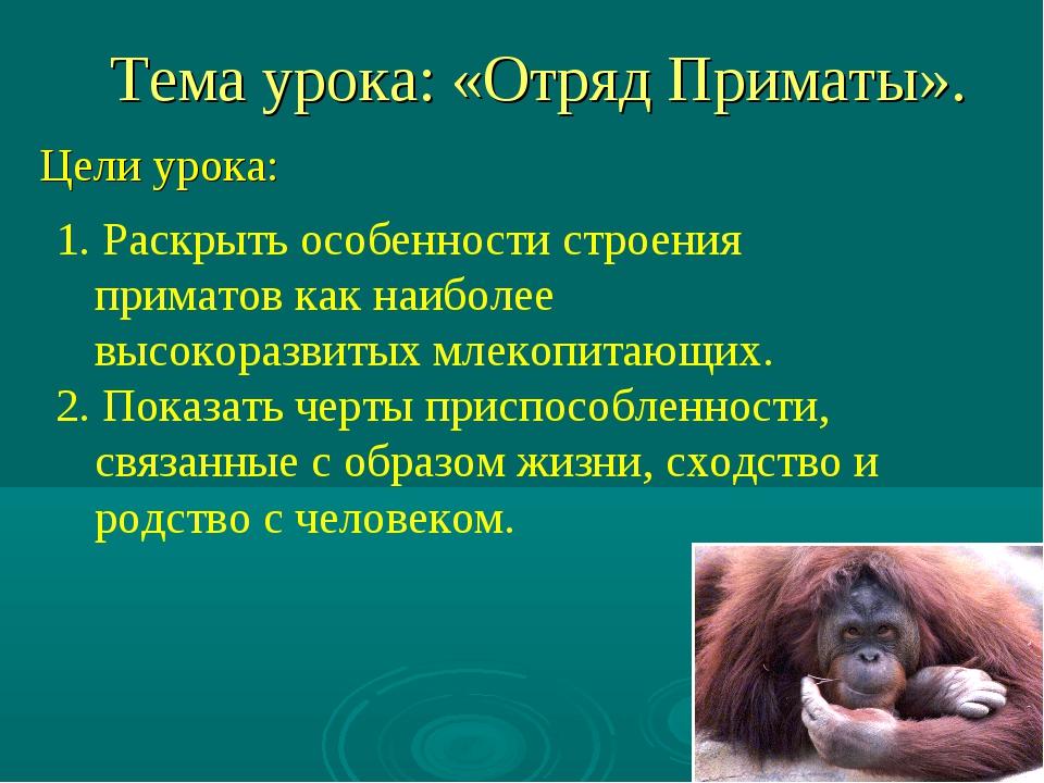 Тема урока: «Отряд Приматы». Цели урока: 1. Раскрыть особенности строения при...