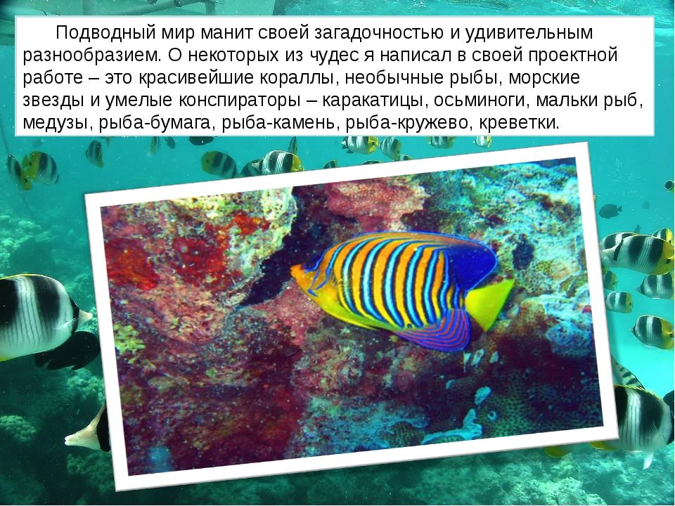 Подводный мир манит своей загадочностью и удивительным разнообразием. О некот...