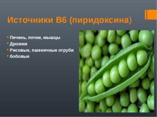 Источники В6 (пиридоксина) Печень, почки, мышцы Дрожжи Рисовые, пшеничные отр