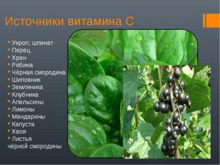 Источники витамина С Укроп, шпинат Перец Хрен Рябина Чёрная смородина Шиповни