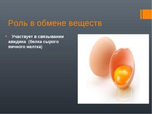Роль в обмене веществ Участвует в связывании авидина (белка сырого яичного же