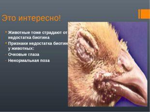 Это интересно! Животные тоже страдают от недостатка биотина Признаки недостат