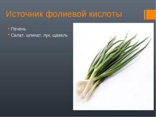 Источник фолиевой кислоты Печень Салат, шпинат, лук, щавель