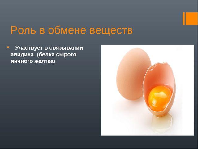 Роль в обмене веществ Участвует в связывании авидина (белка сырого яичного же...
