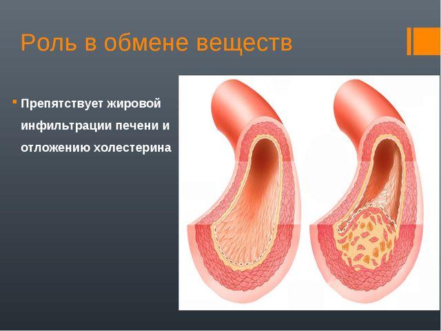 Роль в обмене веществ Препятствует жировой инфильтрации печени и отложению хо...