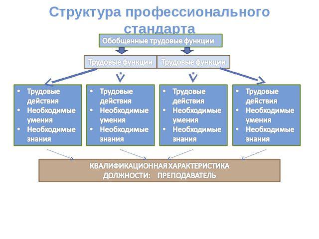 Структура профессионального стандарта