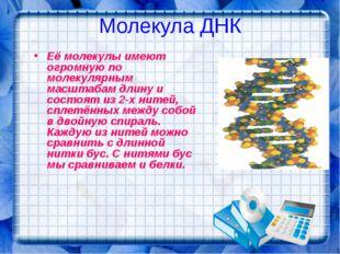 Молекула ДНК Её молекулы имеют огромную по молекулярным масштабам длину и сос