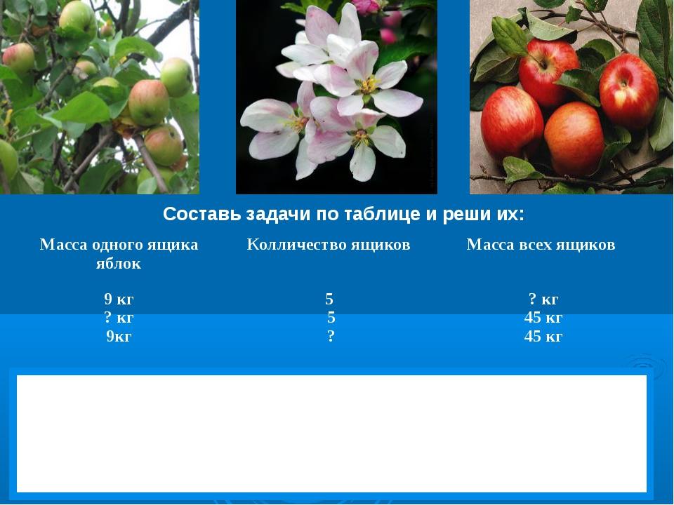 Составь задачи по таблице и реши их: Масса одного ящика яблокКолличество ящи...