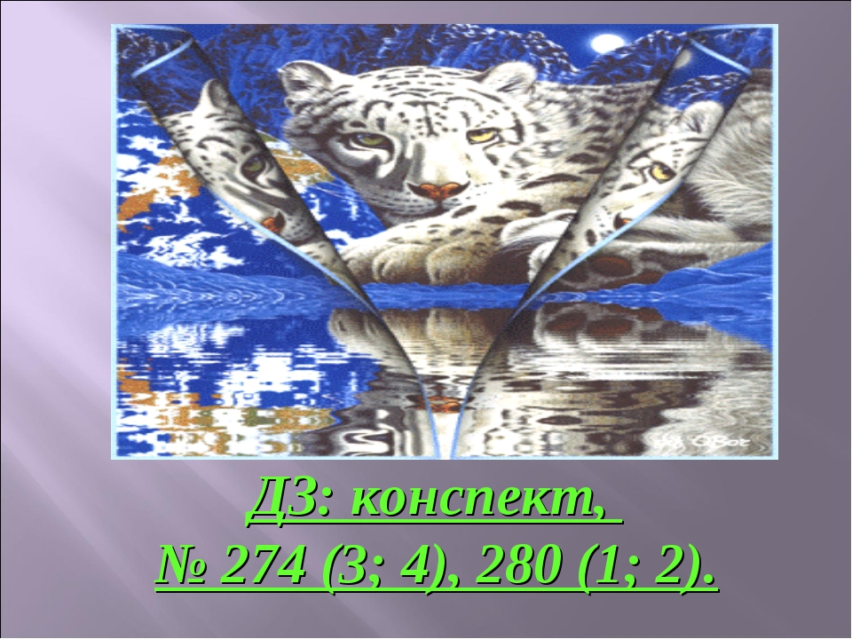 ДЗ: конспект, № 274 (3; 4), 280 (1; 2).