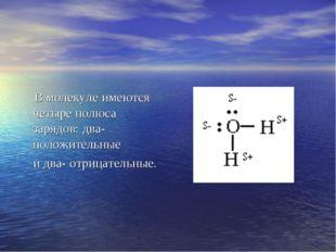В молекуле имеются четыре полюса зарядов: два- положительные и два- отрицате