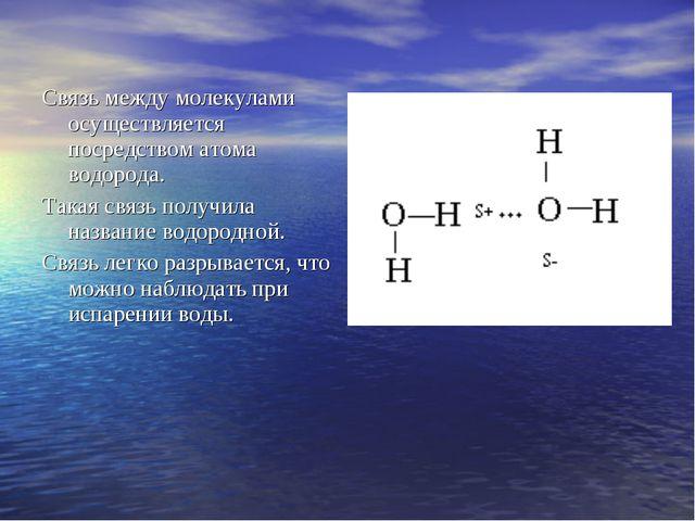 Связь между молекулами осуществляется посредством атома водорода. Такая связь...