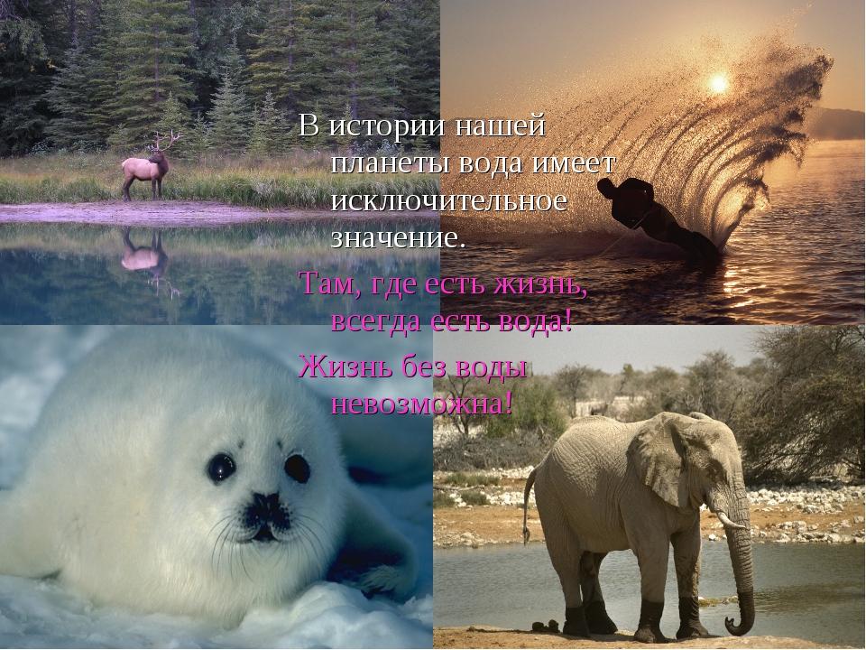 В истории нашей планеты вода имеет исключительное значение. Там, где есть жиз...
